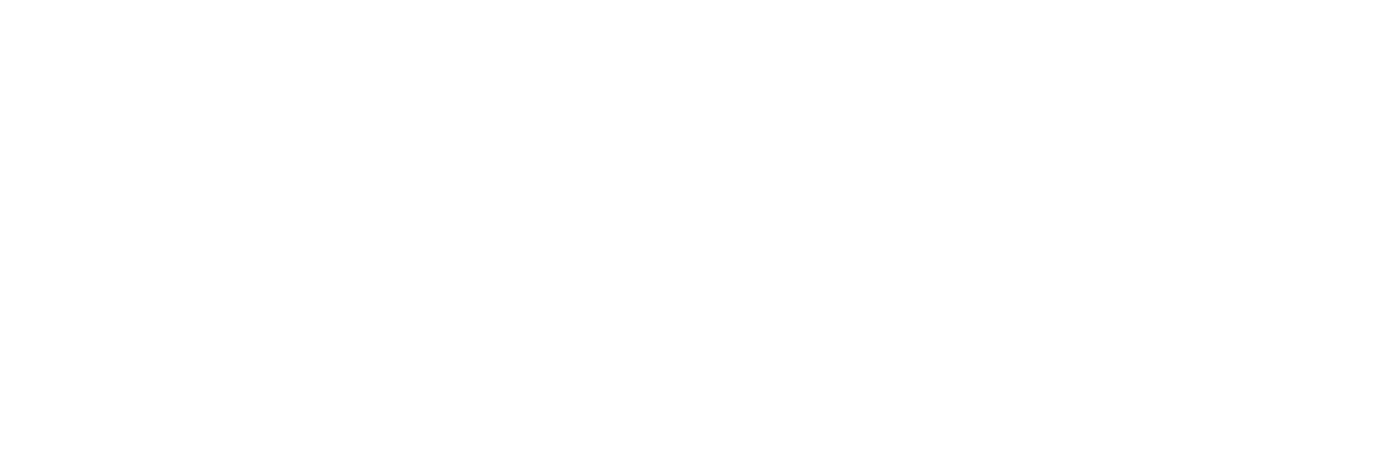 Logo Irys